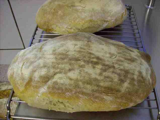 comp_100_5510_Brot  mit 2 Sauerteigen nach Hamelman)