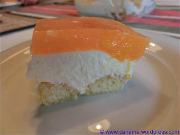 comp_CR_CIMG8807_OrangenCampari_Tiramisu