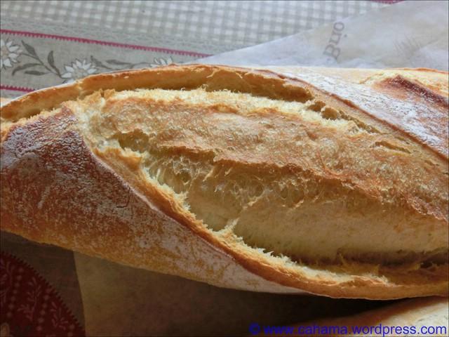 comp_CR_CIMG2502_Baguette