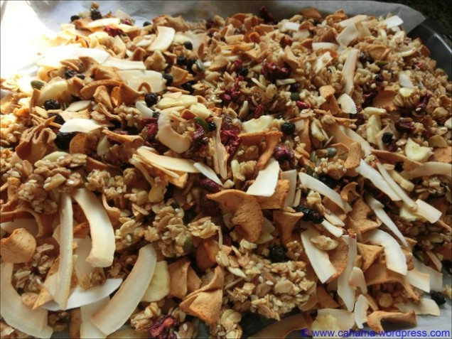 comp_CR_CIMG5410_Apple_Pie_Granola_Knuspermüsli
