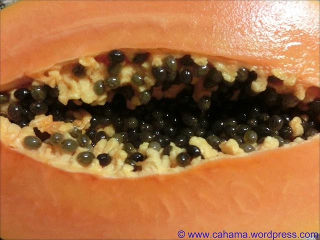 comp_CR_CIMG5221_Papaya