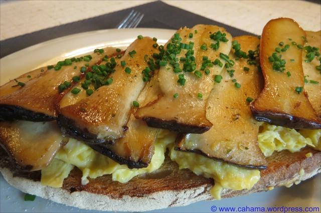 comp_CR_IMG_4511_Toast_Rührei_Kräuterseitlinge
