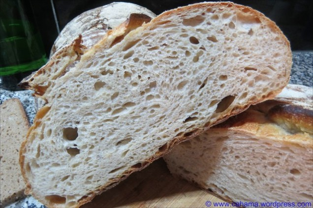 comp_CR_IMG_5999_Mein_Sommerbrot_Brotdoc