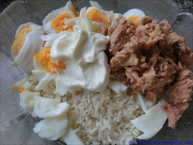 comp_CR_CIMG4373_Thunfisch_Reis_Salat