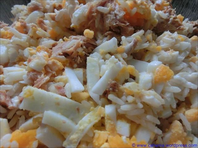comp_CR_CIMG4382_Thunfisch_Reis_Salat