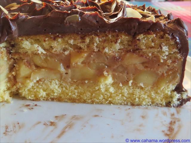 comp_CR_IMG_8455_Apfel_Schokoladen_Torte