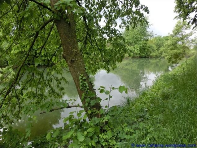 comp_CR_CIMG1915_Rhein_Rhone_Kanal