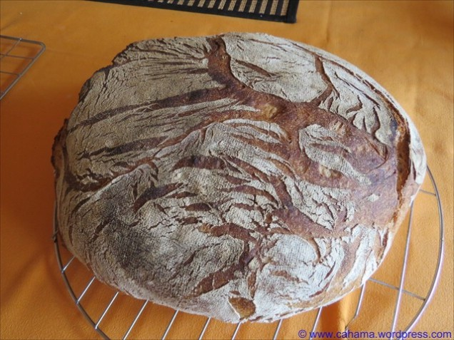 comp_CR_IMG_9082_Sommerbrot