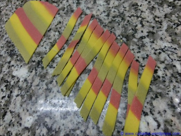 comp_cr_cimg0949_pasta_tricolore